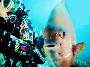 學潛水睇魚