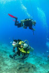 菲律賓潛水教練