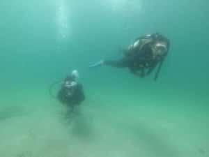 潛水課程出海